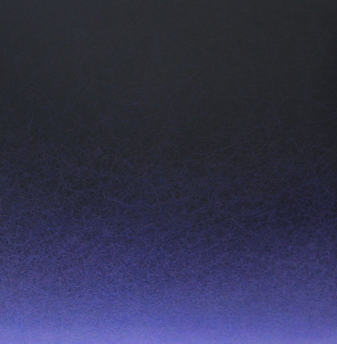 Quantum Entanglement (Violet 1)